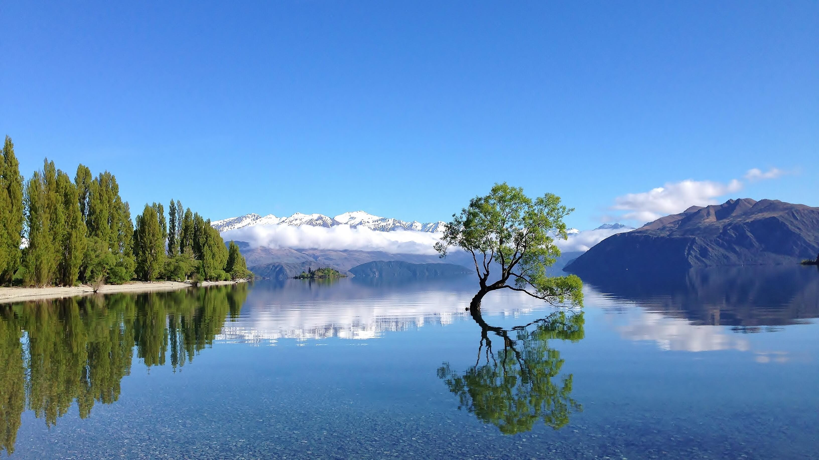 Hygienist/OHT - Wanaka and Queenstown