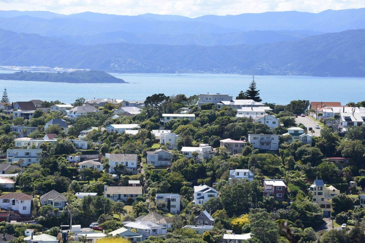 Dentist part time - Wellington